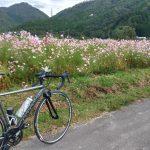 兵庫県三田市のコスモスを観に行くライド!(CAAD12&NMAX155)